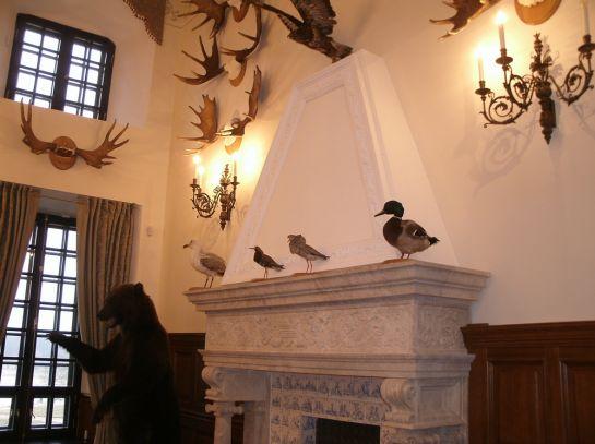 в охотничьем зале замка