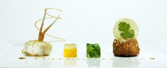 sani_gourmet_food