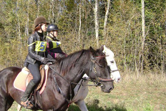 команда-АВ-Спортивные-лошади