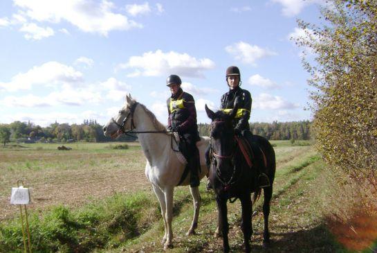 команда-АВ-Спортивные-лошади_2