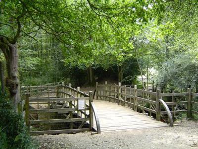 Pooh-Bridge-in-Ashdown-Forest