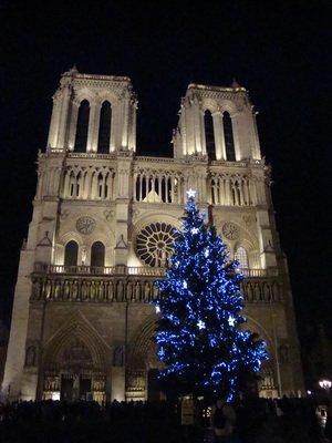 Праздничная елка у собора Нотр-Дам де Пари