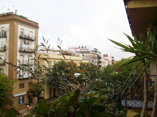 вид-с-балкона