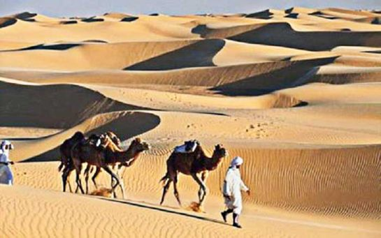 beduiny