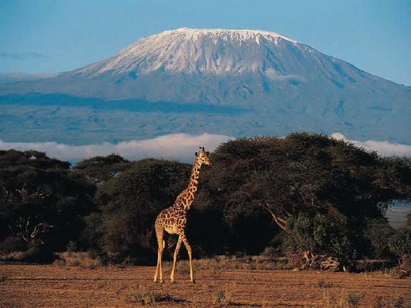 Килиманджаро_новый размер