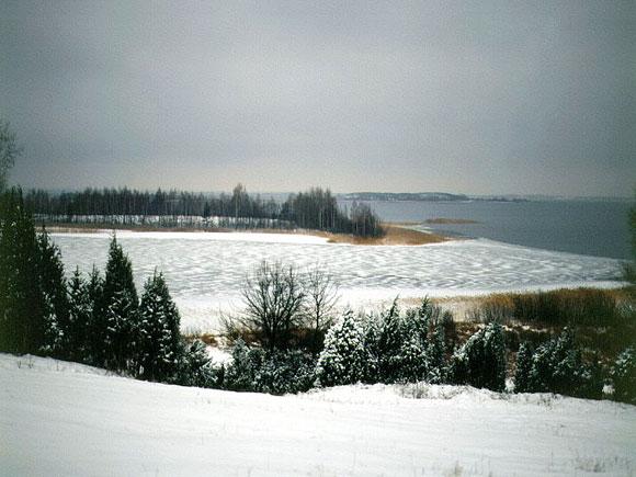 Brasl-zimA