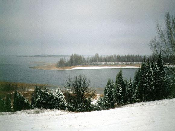 Brasl-zim