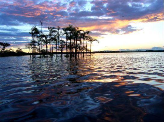 Cuyabeno_Reserve,_Laguna_Grande