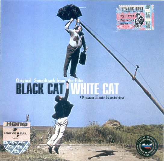 черная кошка 2