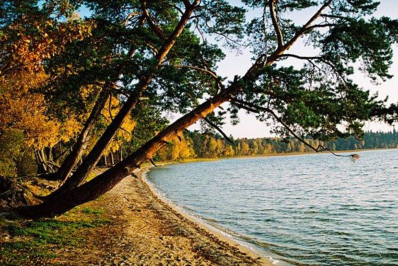 Очень живописно озеро выглядит осенью