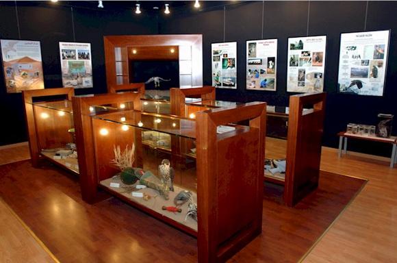 falcon hoslital museum